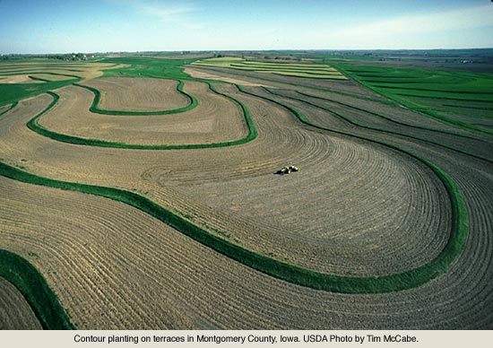Contour farming images galleries with for Terrace farming definition