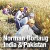 Dr. Norman Borlaug's experience in India and Pakistan