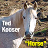 Ted Kooser reads his poem Horse