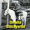 Buyer at Omaha Stockyards