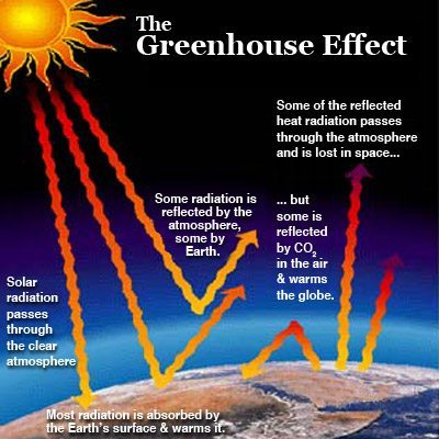 global warming effects on humans essay